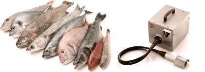 Профессиональные рыбочистки
